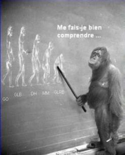 evolutionhumaine.jpg